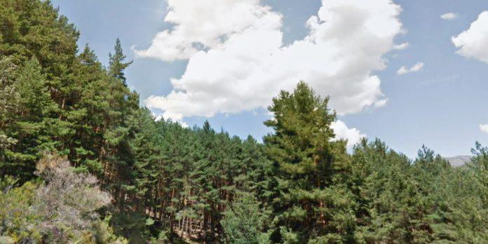 Sitios para visitar en Madrid naturaleza